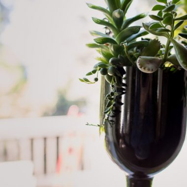 Celebrate Earth Day with Upcycled Wine Crafts