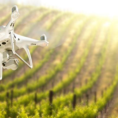 Drone in the air over grape vineyard